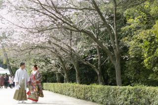 335970_香川_栗林公園ロケーション