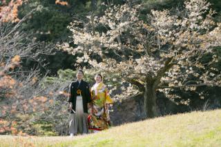 335941_香川_栗林公園ロケーション