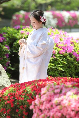 172691_愛媛_ああ!季節の花ロケフォト