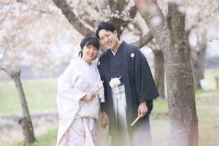 246604_群馬_和装で桜ロケーション