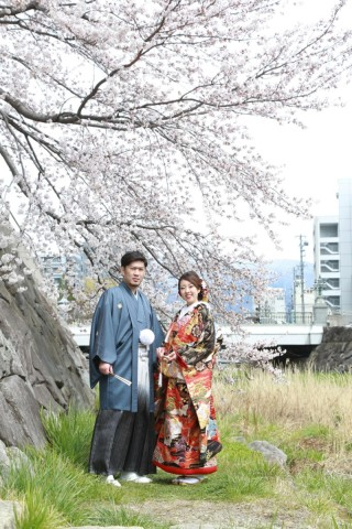 250694_長野_和装×桜