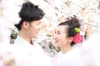 181390_長野_和装×桜