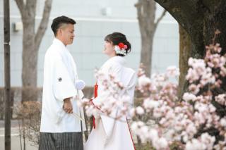 250658_長野_和装×桜