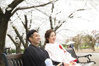 181376_長野_和装×桜
