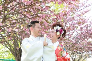 192518_長野_和装×桜