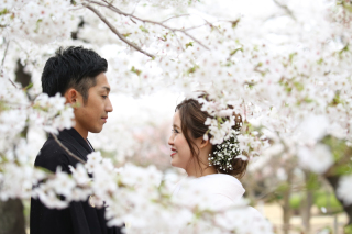 181393_長野_和装×桜