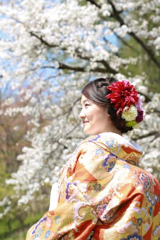 192522_長野_和装×桜