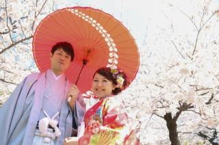 181374_長野_和装×桜