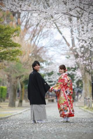 181388_長野_和装×桜