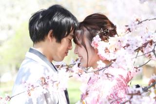 192520_長野_和装×桜