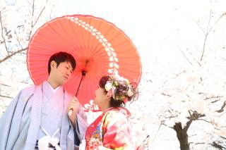 192517_長野_和装×桜