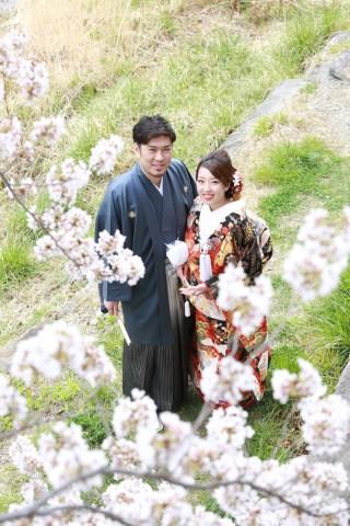 250693_長野_和装×桜