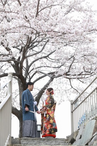 250692_長野_和装×桜