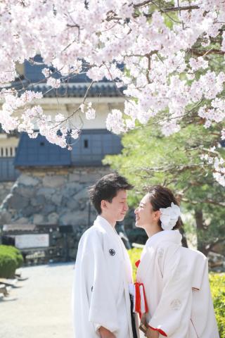 333957_長野_和装×桜