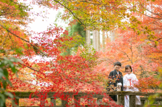 192721_京都_<和装フォト>邸宅&庭園 --紫水苑--