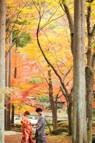 192771_京都_<季節のフォト> 紅葉