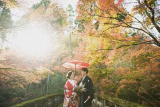 271733_京都_<季節のフォト> 紅葉
