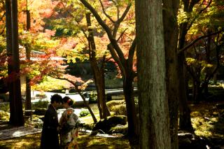 192742_京都_<季節のフォト> 紅葉