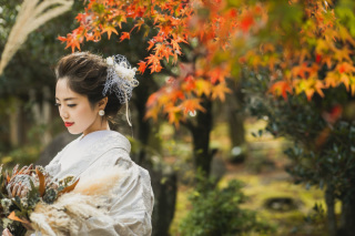 271730_京都_<季節のフォト> 紅葉