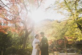 271735_京都_<季節のフォト> 紅葉