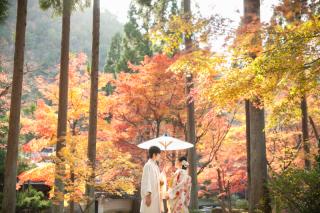 192737_京都_<季節のフォト> 紅葉