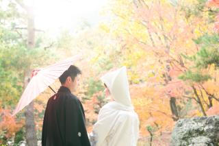 192767_京都_<季節のフォト> 紅葉
