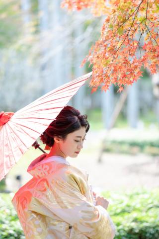 386542_京都_<季節のフォト> 紅葉