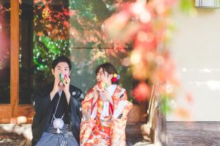 335553_京都_<和装フォト>邸宅&庭園 --紫水苑--