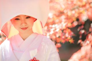192755_京都_<季節のフォト> 紅葉
