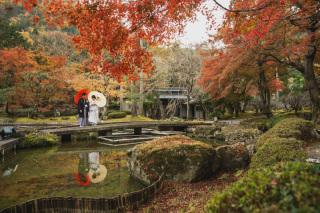 271729_京都_<季節のフォト> 紅葉