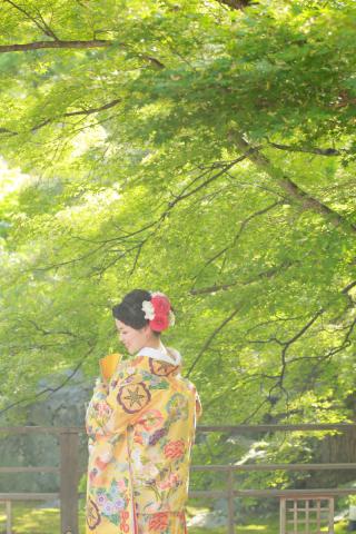 192696_京都_<和装フォト>邸宅&庭園 --紫水苑--