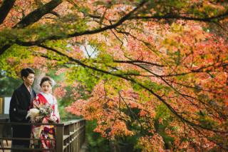271734_京都_<季節の和装フォト> 日本庭園【桜・紅葉】