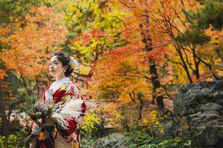 271726_京都_<季節のフォト> 紅葉