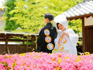 253316_群馬_日本庭園 和装