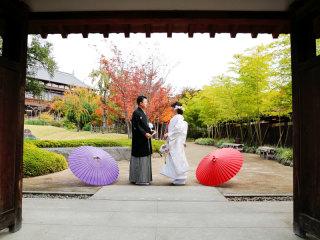 253311_群馬_日本庭園 和装