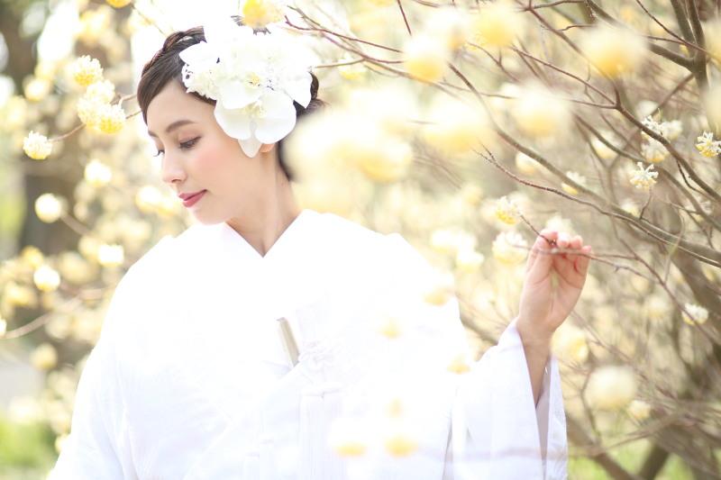 花嫁和婚_トップ画像3