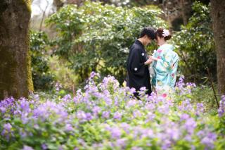 247448_京都_春の季節