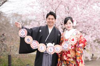 247435_京都_春の季節
