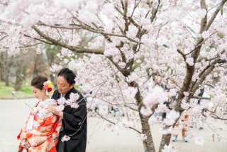 247432_京都_春の季節
