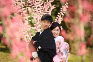 247439_京都_春の季節