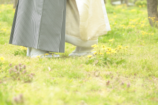 247454_京都_春の季節