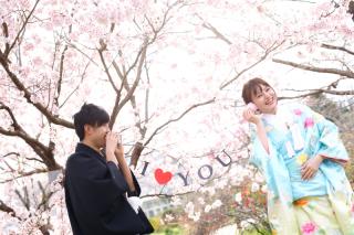 247449_京都_春の季節