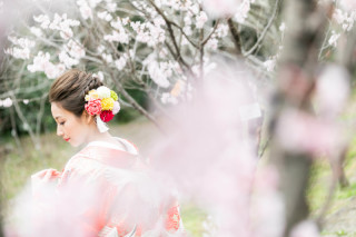 247431_京都_春の季節
