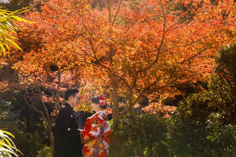 縁-enishi-鎌倉ウエディング_トップ画像1