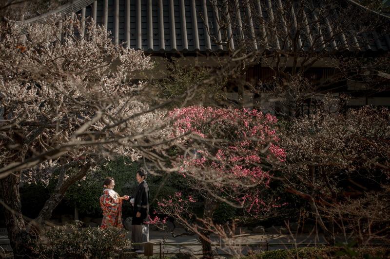 縁-enishi-鎌倉ウエディング_トップ画像4