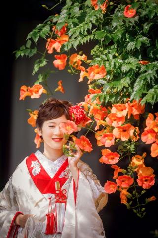 209269_神奈川_鎌倉 和装