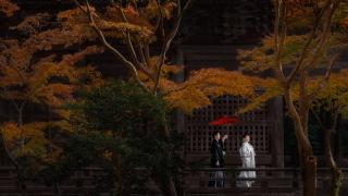 209274_神奈川_鎌倉 和装