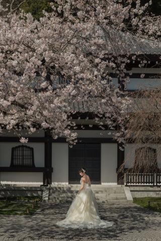 281203_神奈川_鎌倉 和装・洋装ロケーション撮影