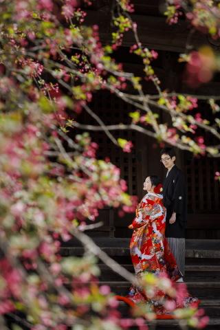 209279_神奈川_鎌倉 和装
