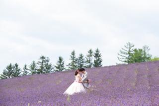 228125_北海道_ラベンダー、お花畑、鳥沼公園、富良野